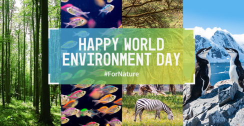This World Environment Day, it's time for nature